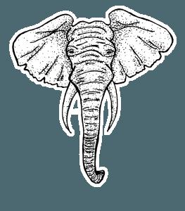 Nayeli-Elephant_Plain
